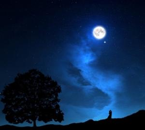 Beneath a Lover's Moon